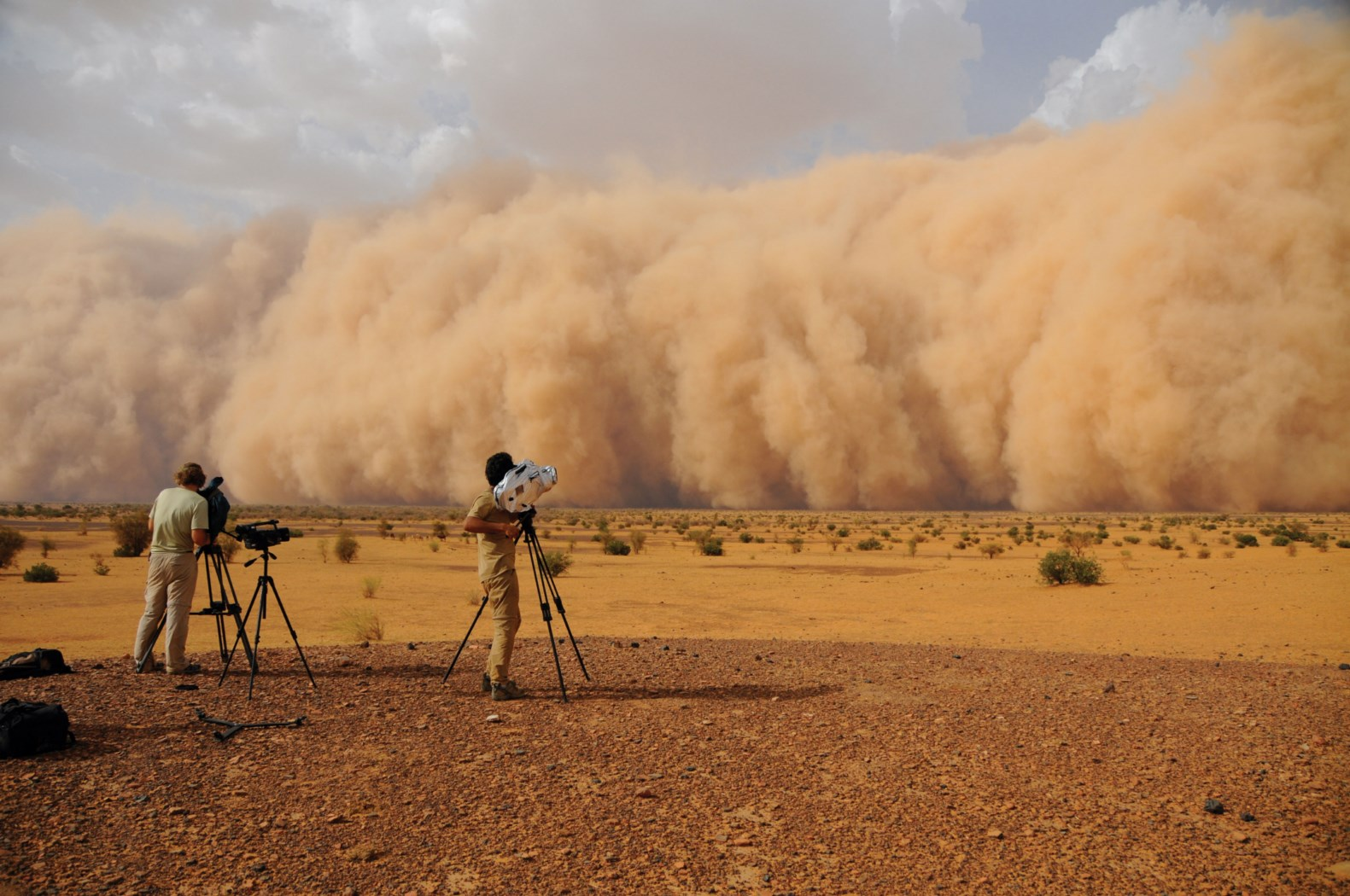 Galerry Mali Guide National Geographic